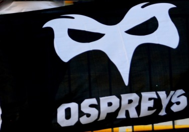 Ospreys_flag_AlbaOvale