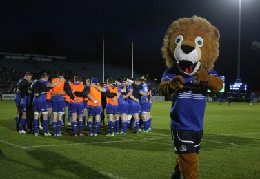 Leo the Lion Leinster mascot RDS Arena