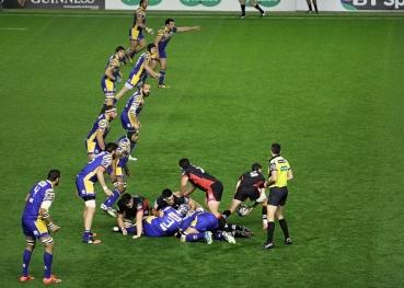 edinburgh-rugby-zebre-rugby
