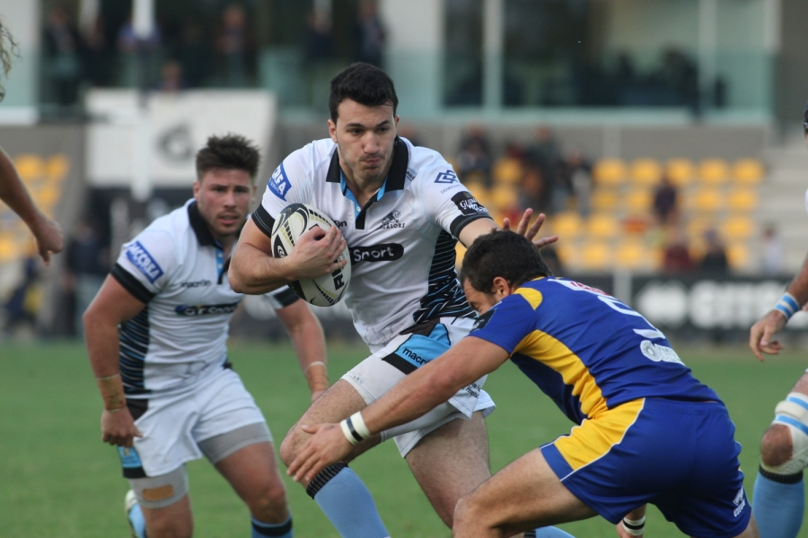 leonardo sarto warriors v zebre